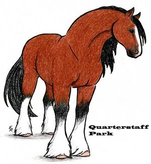 QStaffPark1